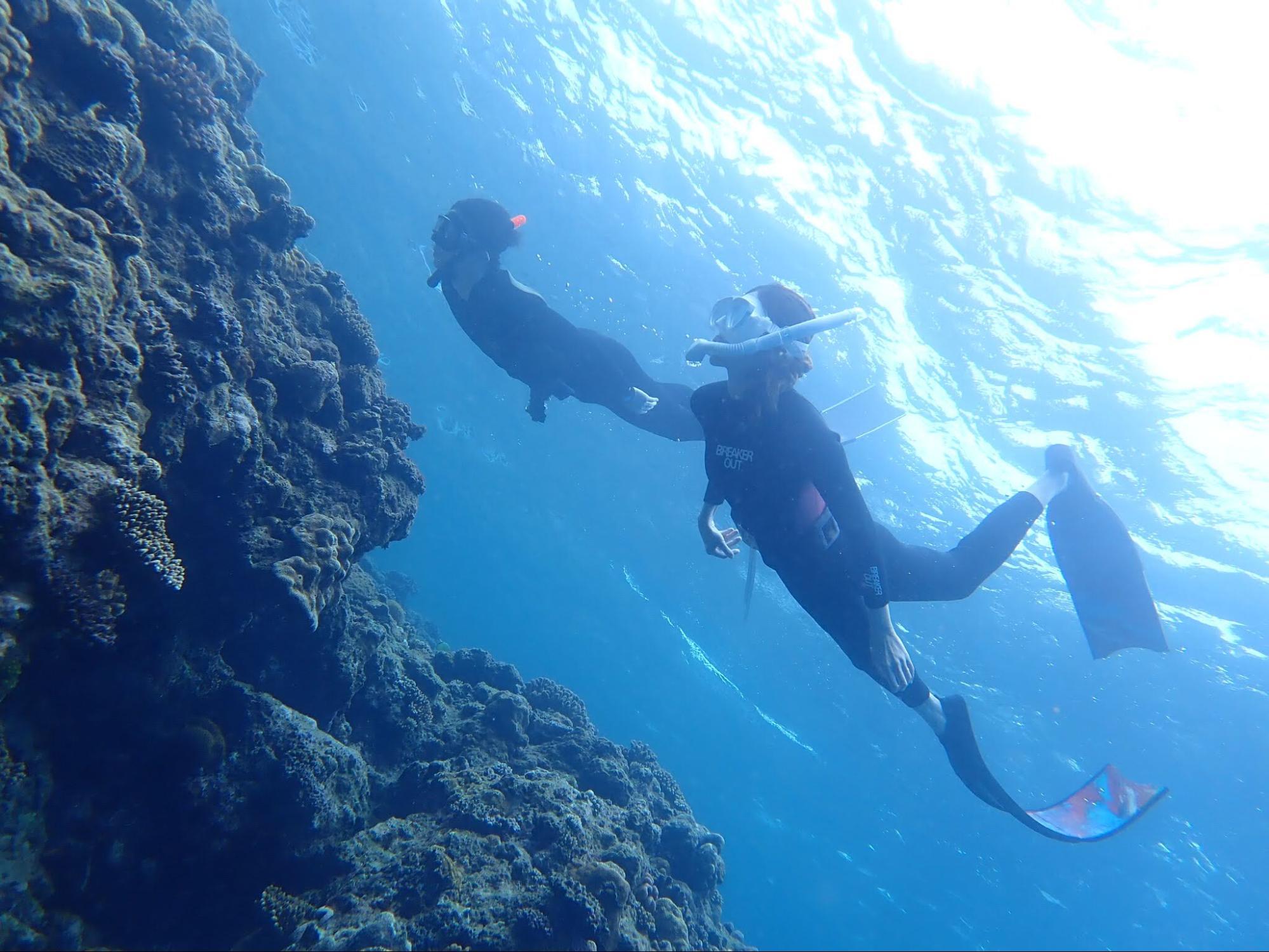 潜水する二人のダイバー